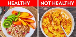 Quick Breakfast Ideas to Start Your Day || Healthy Recipes For The Whole Family!