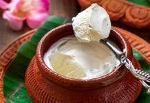 Sugar Free Mishti Doi Recipe | Bengali Mishti Doi | Meetha Dahi | No Sugar No Jaggery No Oven