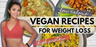 VEGAN LOW CALORIE HIGH PROTEIN HIGH VOLUME RECIPES
